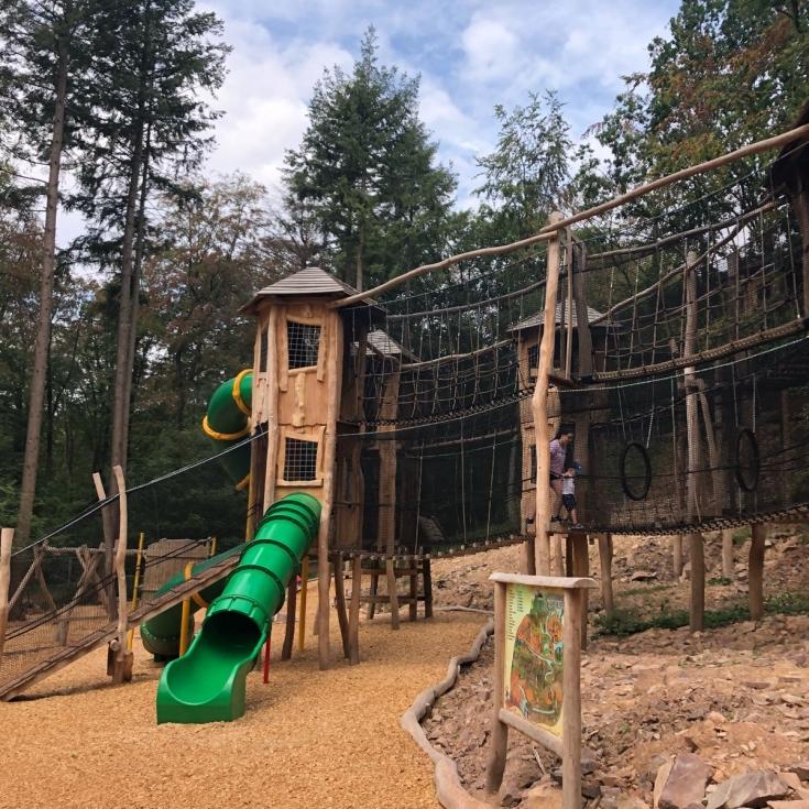 Bild 1: Abenteuerwald