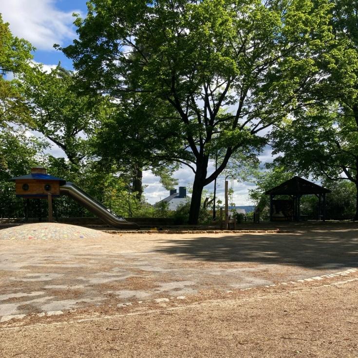 Bild 5: Am Fichtepark