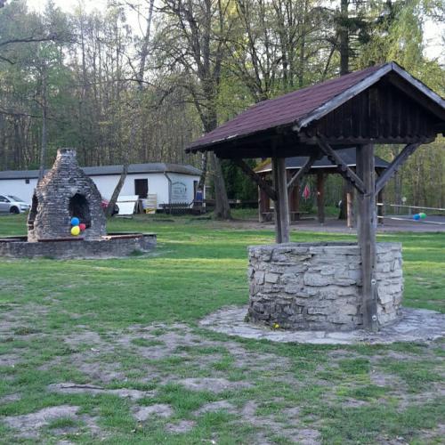 Bild 4: Am Stadtwald