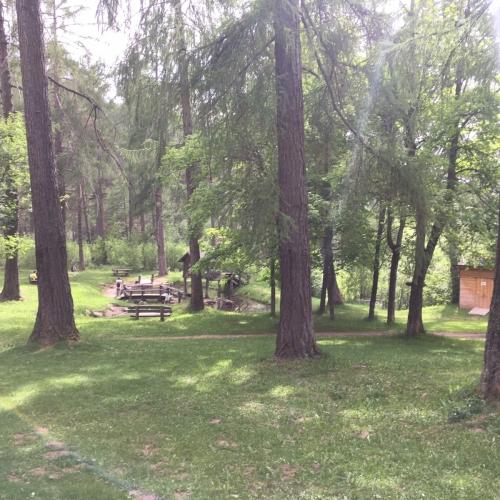 Bild 5: Waldspielplatz Burgweg