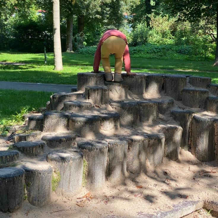 Bild 5: Stadtgarten