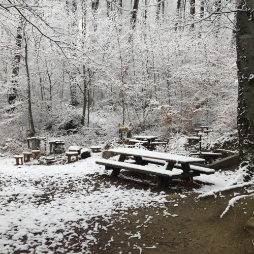 Bild 11: Waldspielplatz Flügerlispielplatz