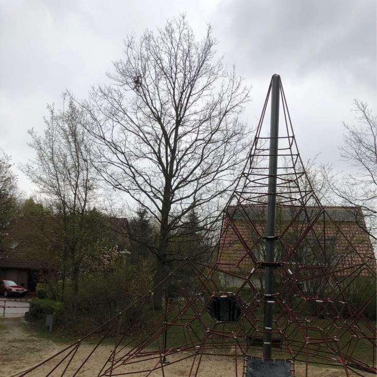 Bild 4: Hedwig-Kohn-Weg