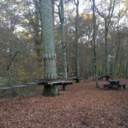 Bild 3: Waldspielplatz Illingen