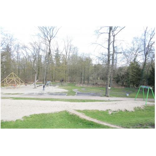 Bild 5: Im Schlossgarten  / Fasanengarten