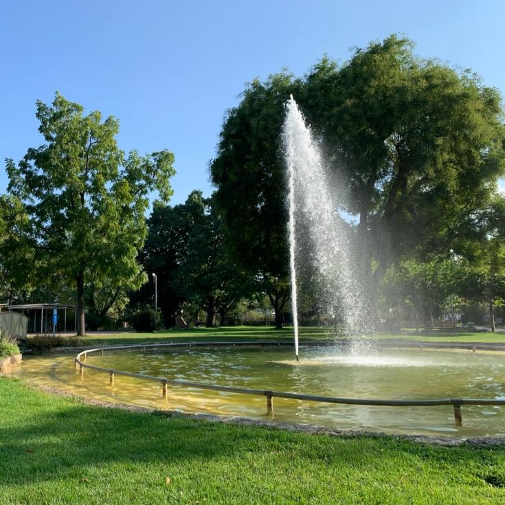 Bild 3: Im Stadtpark