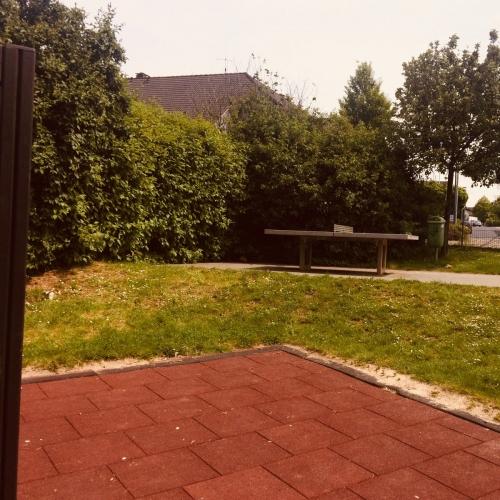 Bild 3: Im Wiesengrund