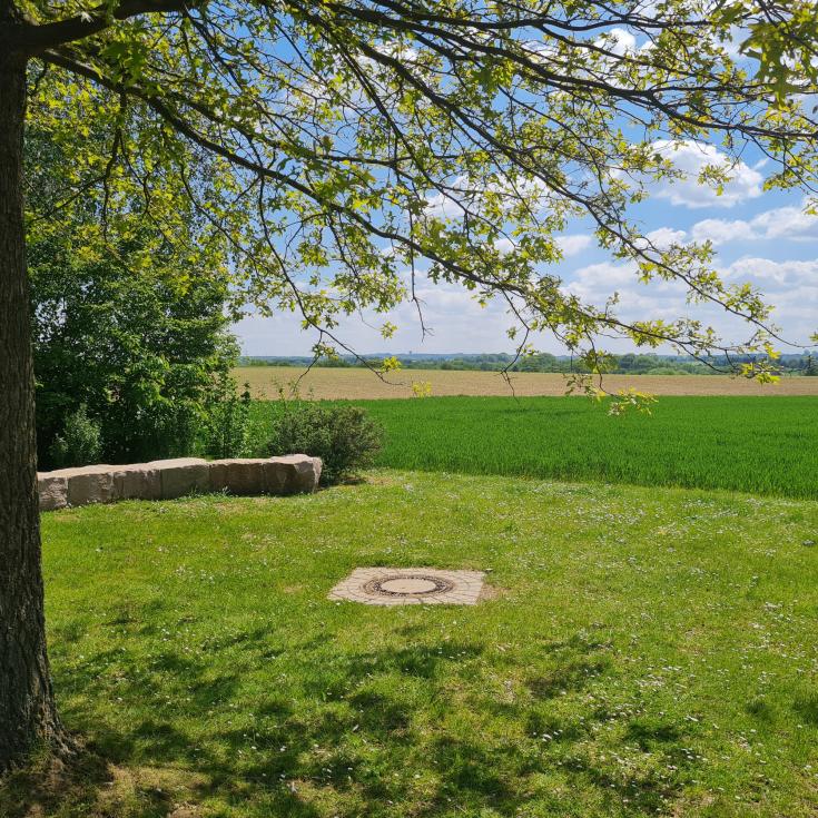 Bild 6: Meisenweg