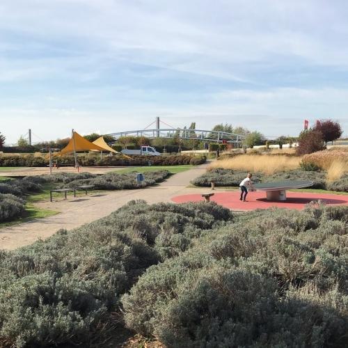 Bild 42: Spiellandschaft Neuland-Park