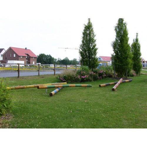 Bild 8: Riedgrasweg