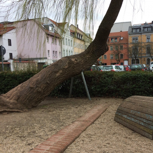 Bild 5: Rollplatz