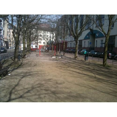 Bild 4: Rottweiler Platz