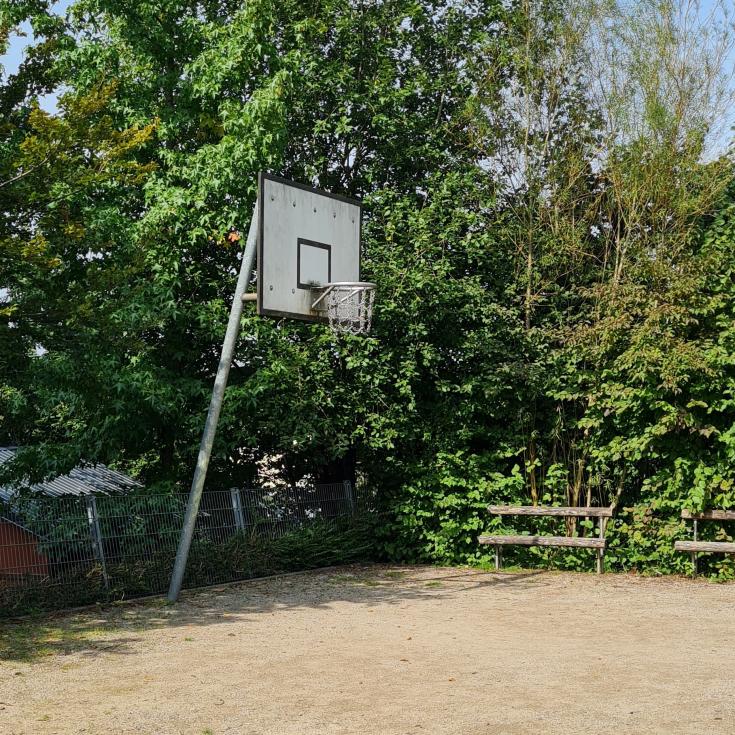Bild 6: Schellenberg