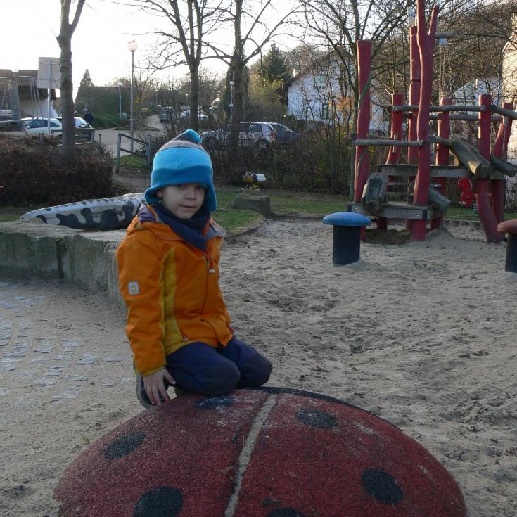 Bild 8: Spielen am Waldrand