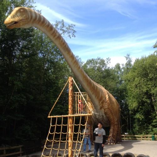 Bild 1: Spielplätze im Dino-Park