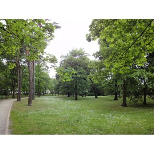 Bild 1: Im Kurpark