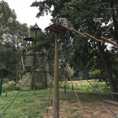 Bild 29: Spielplatz im Tierpark Wismar
