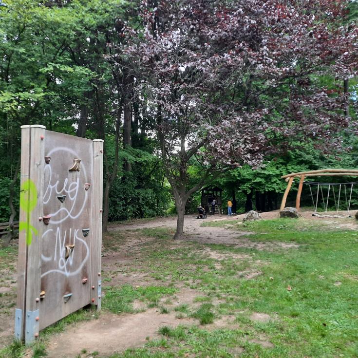 Bild 7: Stadtwald
