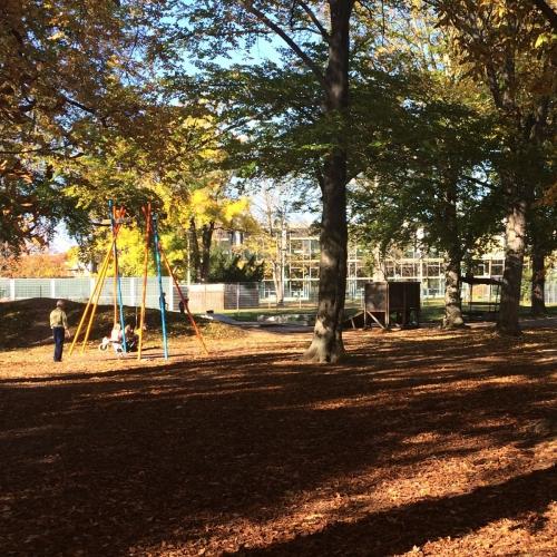 Bild 1: Südpark Spielplatz