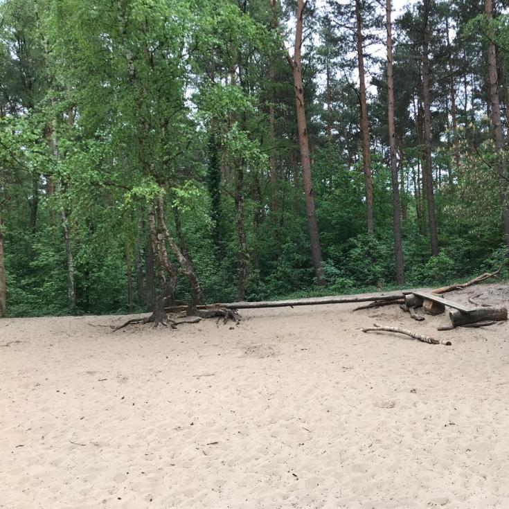 Bild 6: Waldspielplatz Boberg