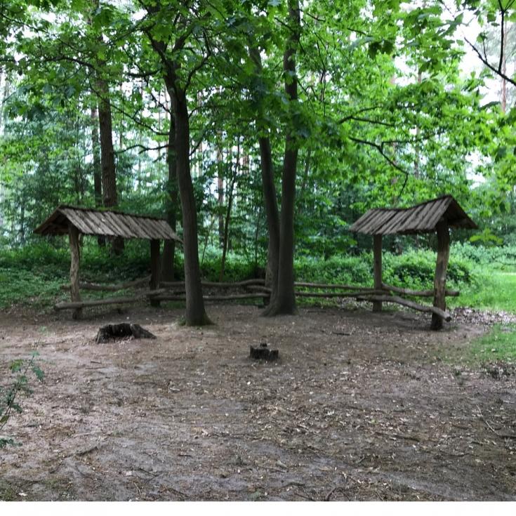 Bild 8: Waldspielplatz Boberg