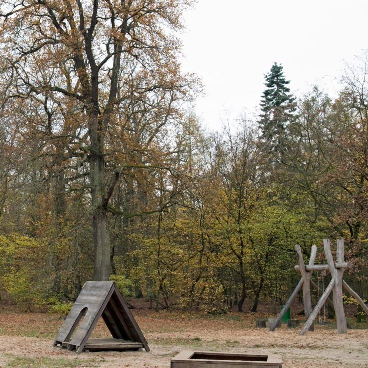 Bild 5: Waldspielplatz Spandauer Forst