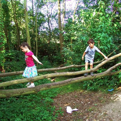 Bild 2: Wildnis für Kinder Beiengelände