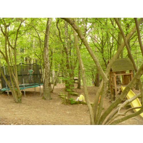 Bild 5: Wildpark Rolandseck
