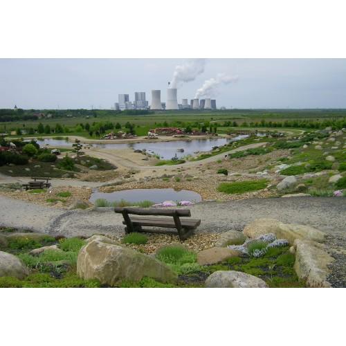 Bild 7: Wüste im Findlingspark