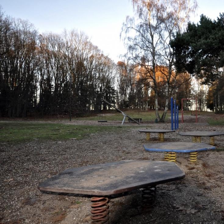 Bild 5: Zonser Heide / Rochusweg